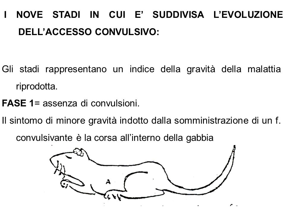 I NOVE STADI IN CUI E' SUDDIVISA L'EVOLUZIONE DELL'ACCESSO CONVULSIVO: