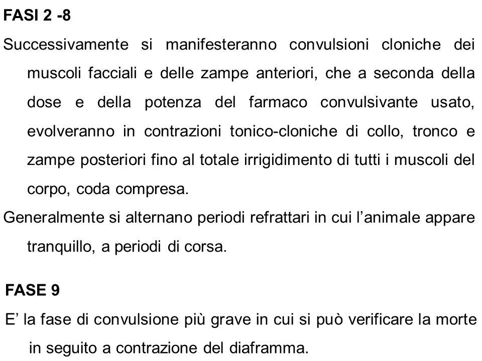 FASI 2 -8