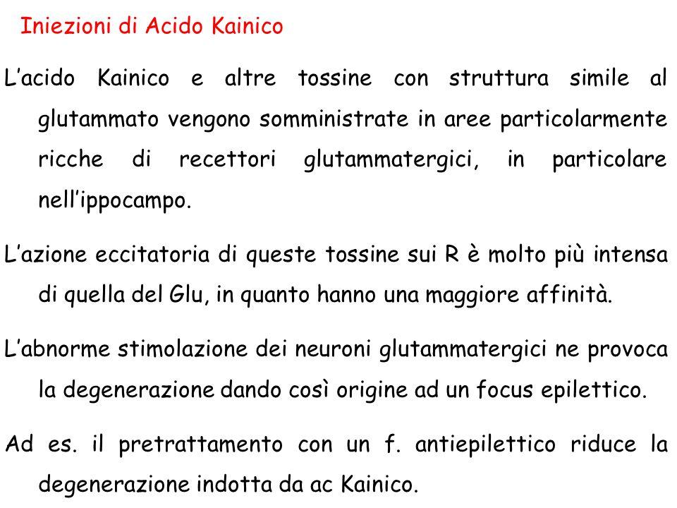 Iniezioni di Acido Kainico