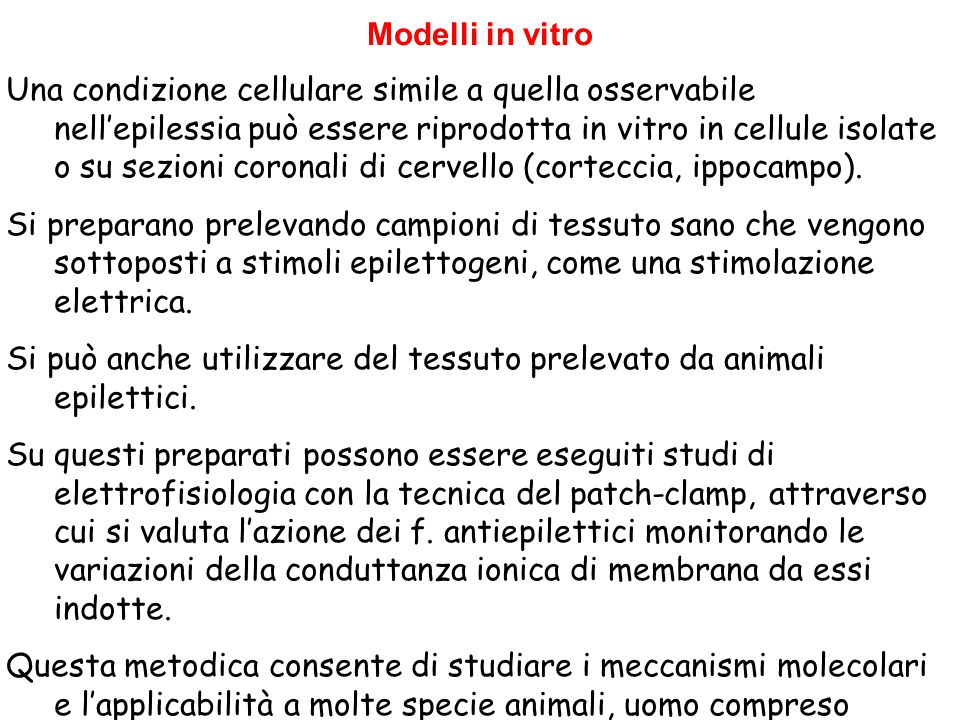 Modelli in vitro