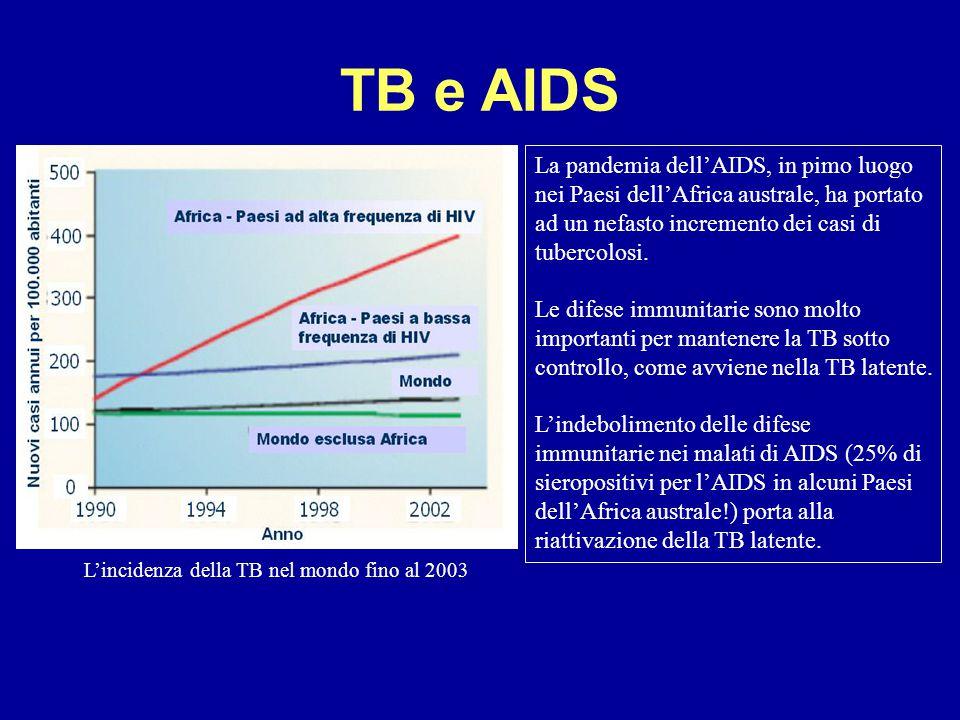 TB e AIDS La pandemia dell'AIDS, in pimo luogo nei Paesi dell'Africa australe, ha portato ad un nefasto incremento dei casi di tubercolosi.