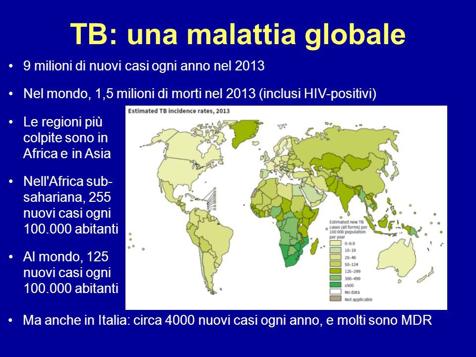 TB: una malattia globale