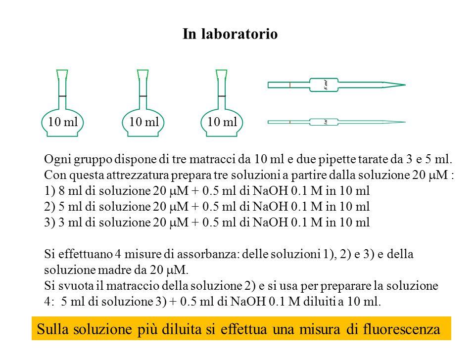 Sulla soluzione più diluita si effettua una misura di fluorescenza
