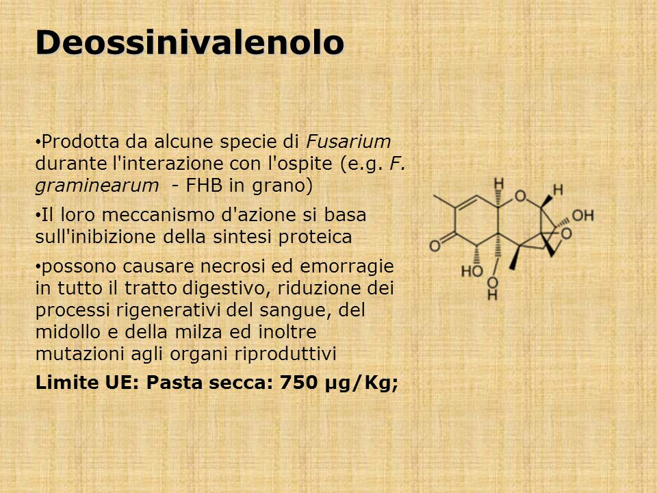 Deossinivalenolo Prodotta da alcune specie di Fusarium durante l interazione con l ospite (e.g. F. graminearum - FHB in grano)