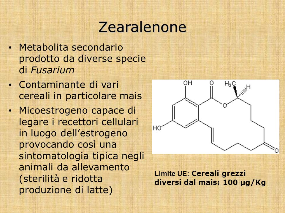 Zearalenone Metabolita secondario prodotto da diverse specie di Fusarium. Contaminante di vari cereali in particolare mais.