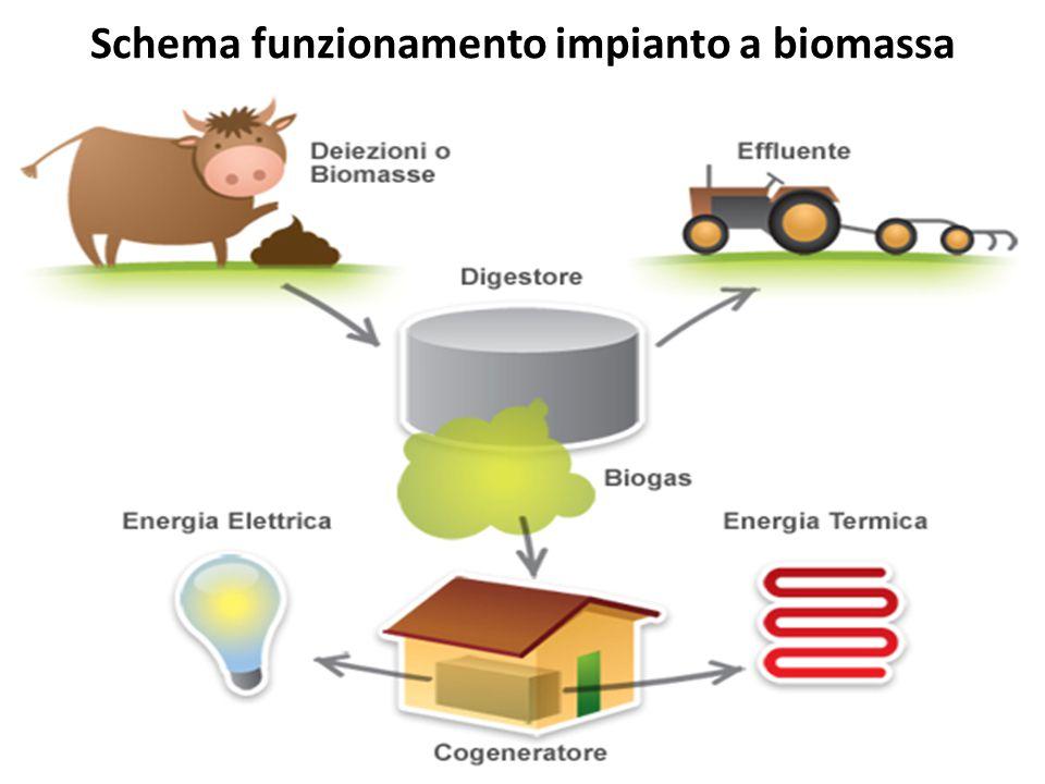 Schema funzionamento impianto a biomassa