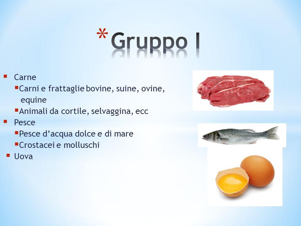 Gruppo I Carne Carni e frattaglie bovine, suine, ovine, equine