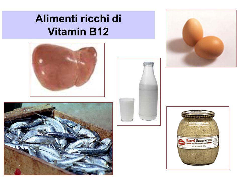 Alimenti ricchi di Vitamin B12