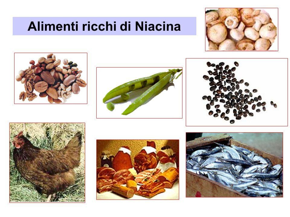 Alimenti ricchi di Niacina