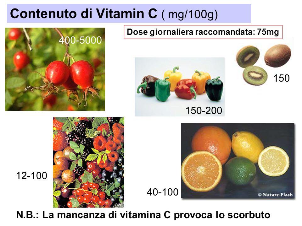 Contenuto di Vitamin C ( mg/100g)