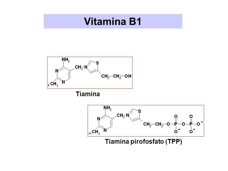 Tiamina pirofosfato (TPP)