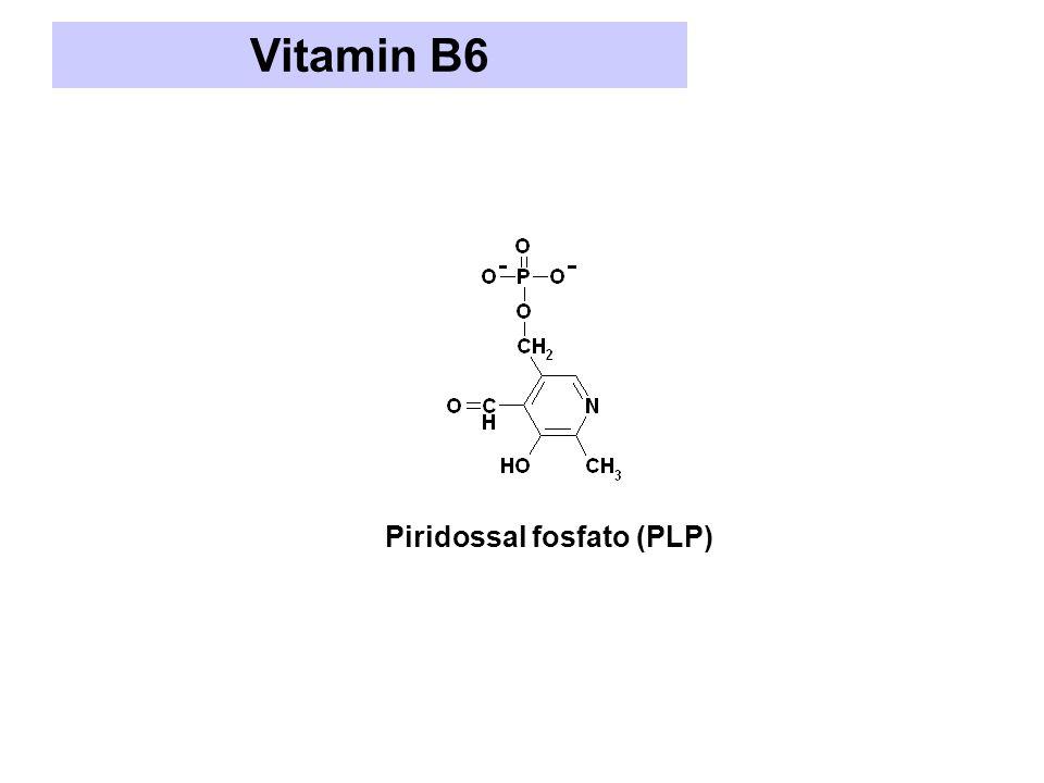 Vitamin B6 Piridossal fosfato (PLP)