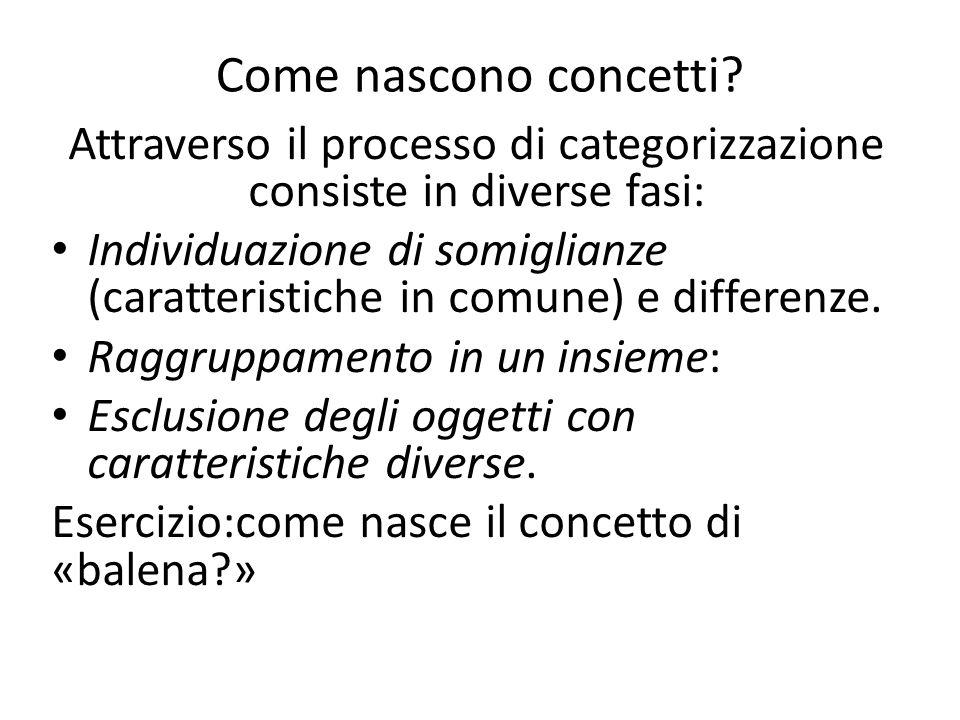 Attraverso il processo di categorizzazione consiste in diverse fasi: