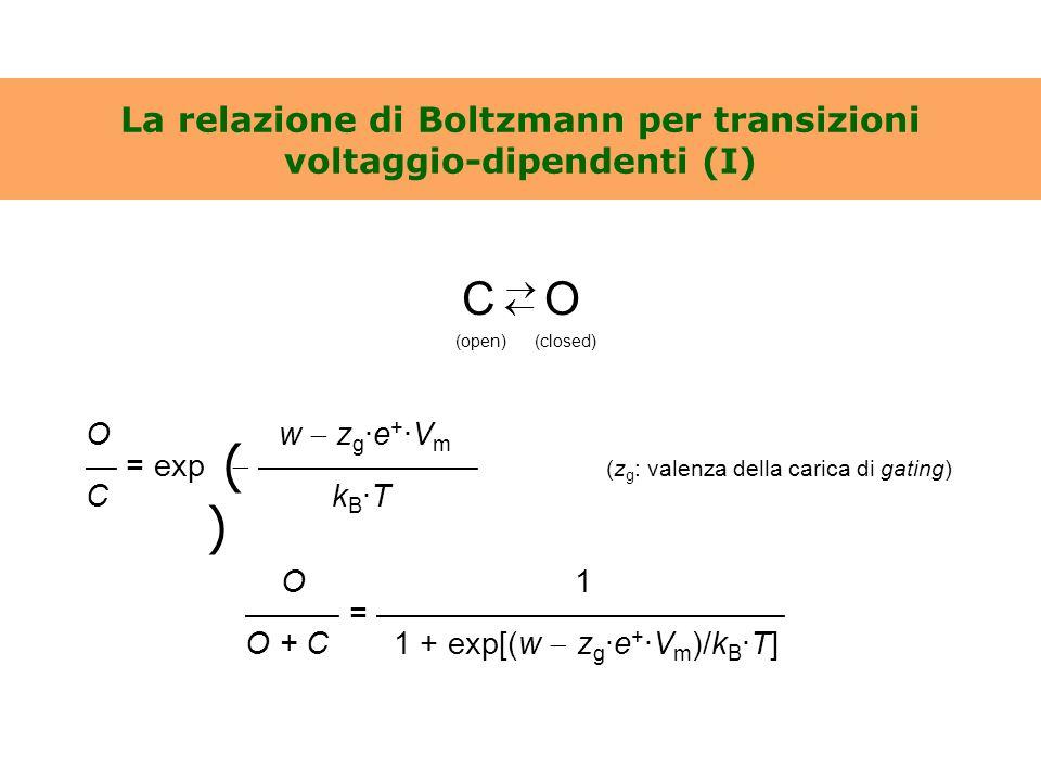 La relazione di Boltzmann per transizioni voltaggio-dipendenti (I)