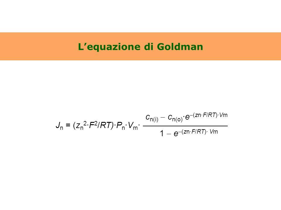 L'equazione di Goldman