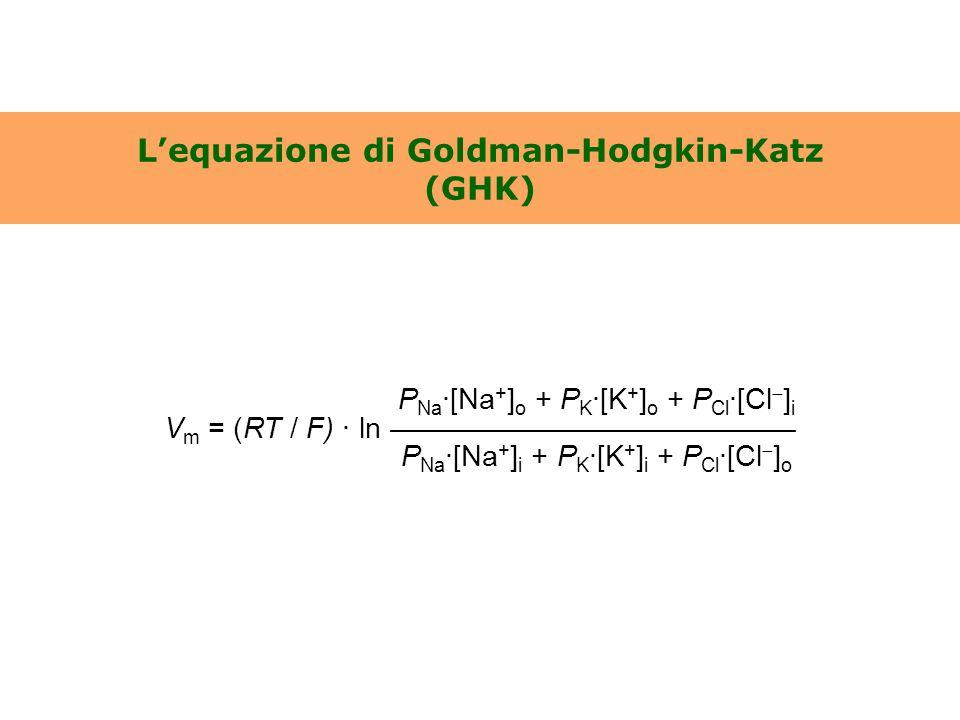 L'equazione di Goldman-Hodgkin-Katz (GHK)