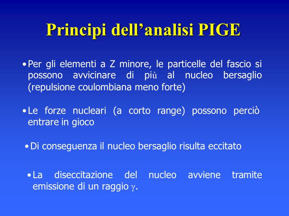 Principi dell'analisi PIGE