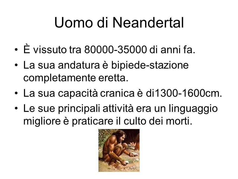 Uomo di Neandertal È vissuto tra 80000-35000 di anni fa.