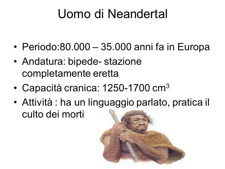 Uomo di Neandertal Periodo:80.000 – 35.000 anni fa in Europa