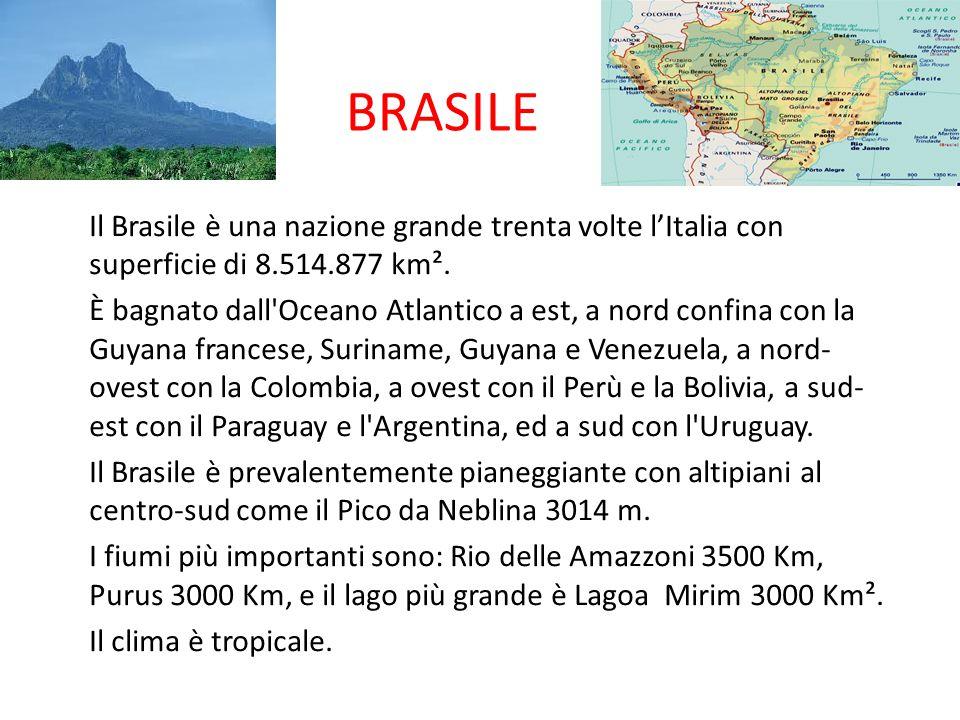BRASILE Il Brasile è una nazione grande trenta volte l'Italia con superficie di 8.514.877 km².