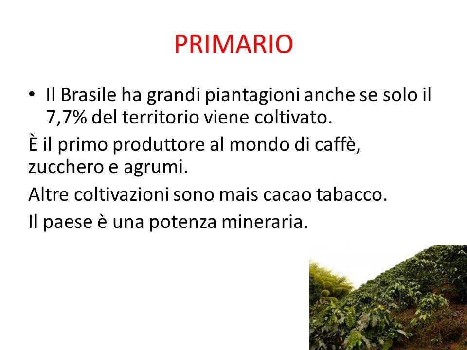PRIMARIO Il Brasile ha grandi piantagioni anche se solo il 7,7% del territorio viene coltivato.