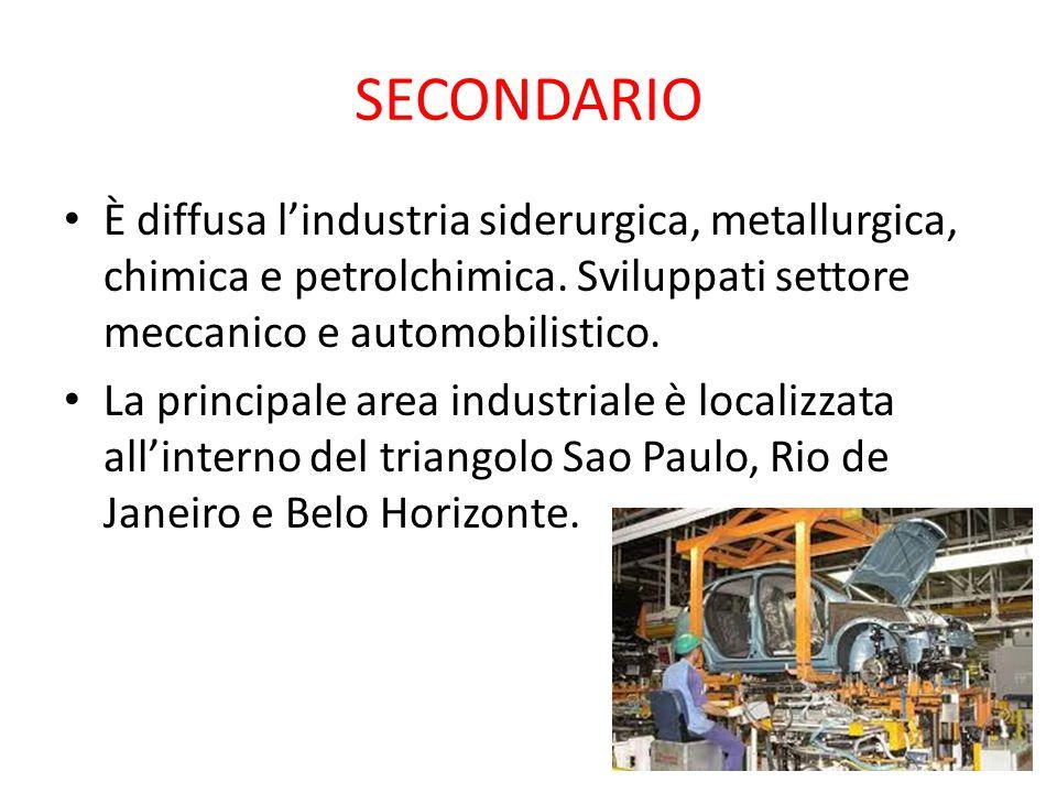 SECONDARIO È diffusa l'industria siderurgica, metallurgica, chimica e petrolchimica. Sviluppati settore meccanico e automobilistico.