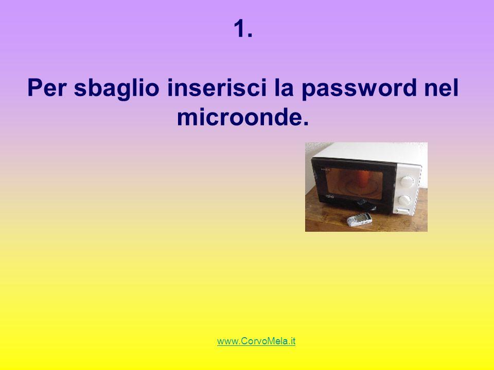 1. Per sbaglio inserisci la password nel microonde.