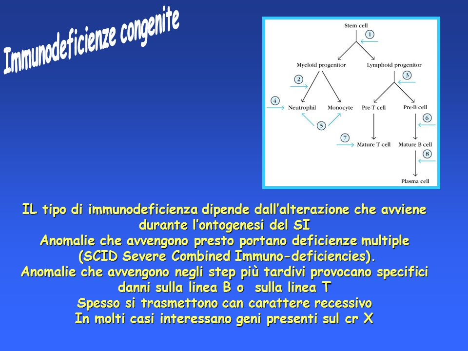 Immunodeficienze congenite