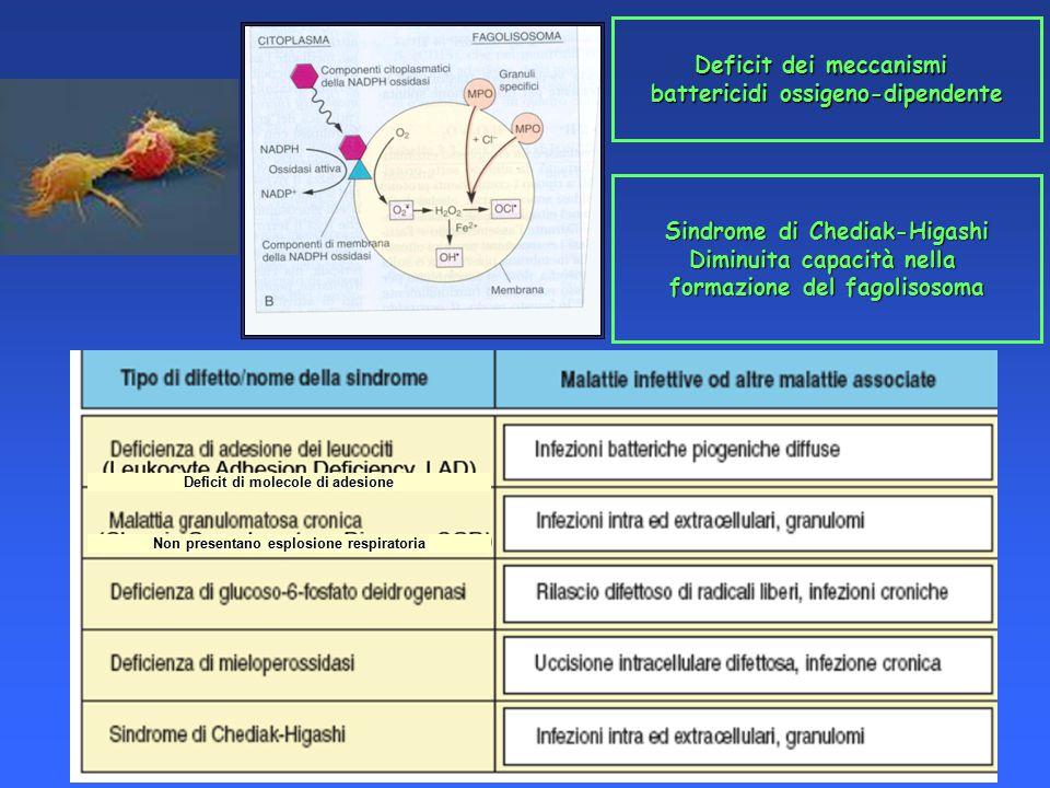 Deficit dei meccanismi battericidi ossigeno-dipendente