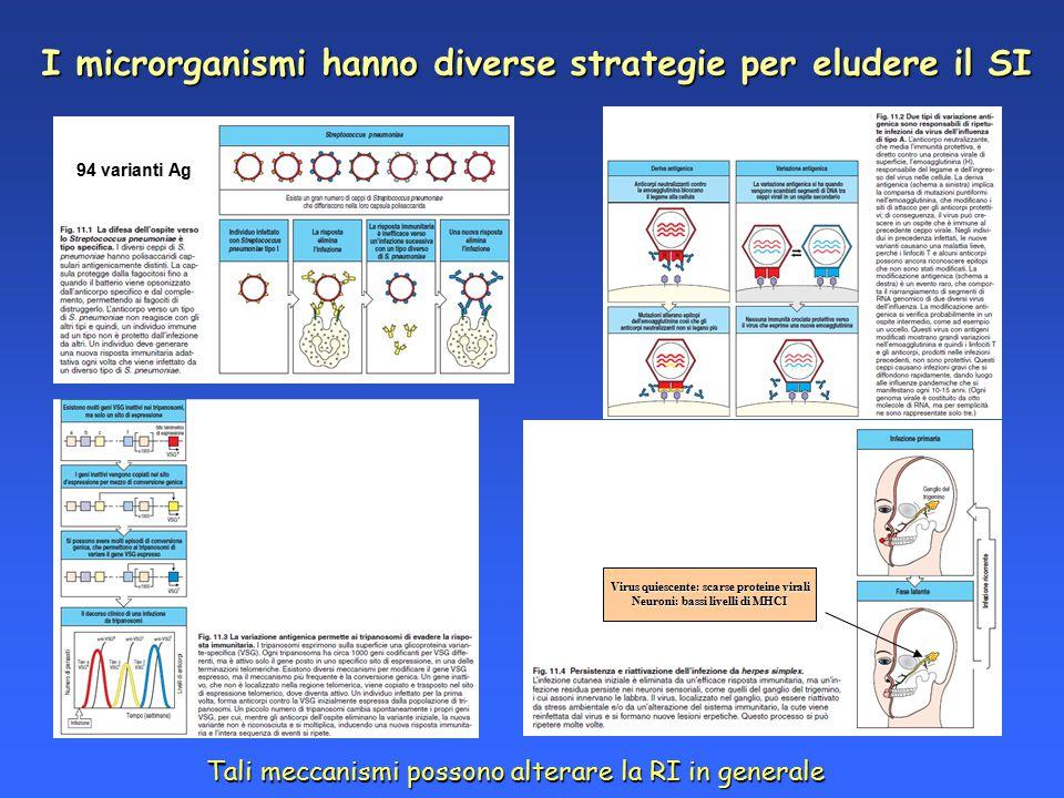 I microrganismi hanno diverse strategie per eludere il SI