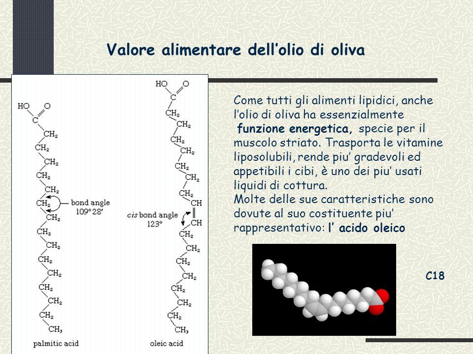 Valore alimentare dell'olio di oliva