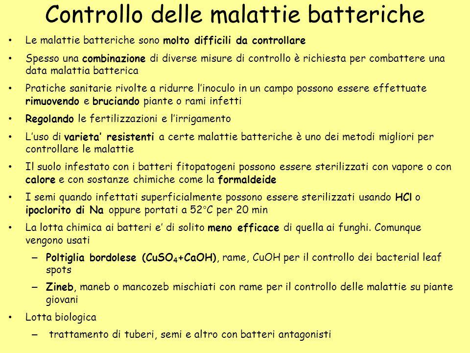Controllo delle malattie batteriche