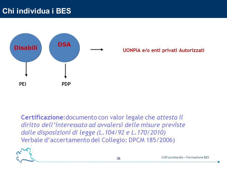 Chi individua i BES Disabili. DSA. UONPIA e/o enti privati Autorizzati. PEI PDP.