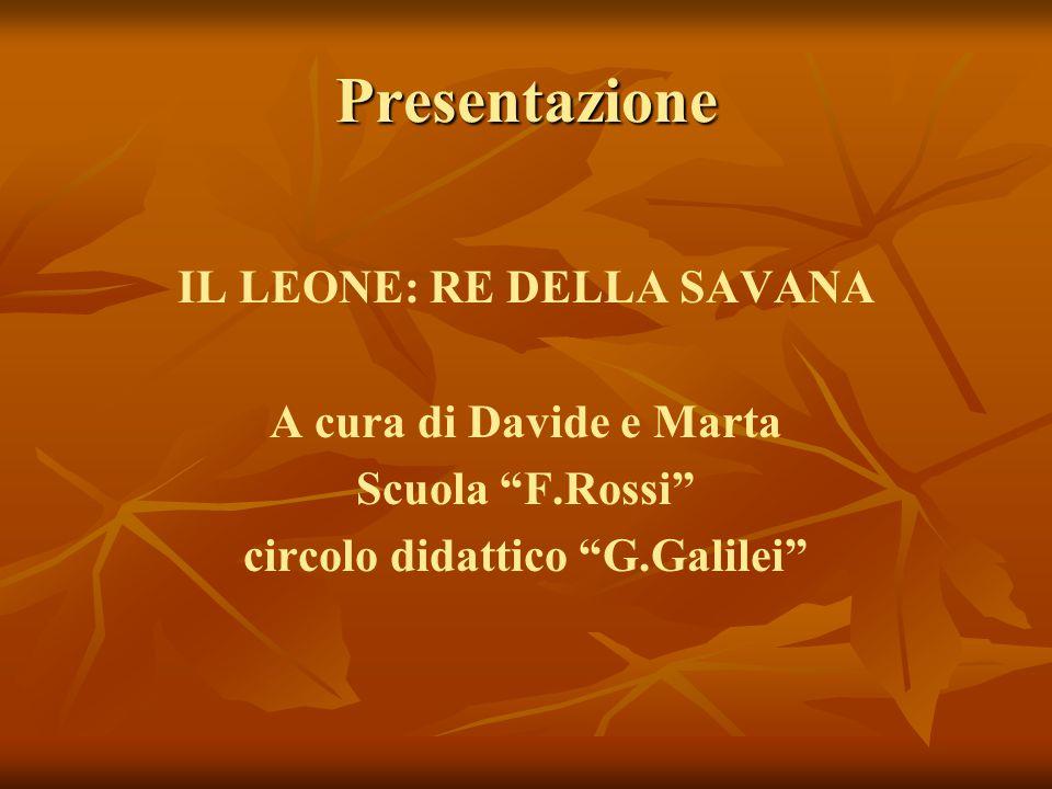 IL LEONE: RE DELLA SAVANA circolo didattico G.Galilei