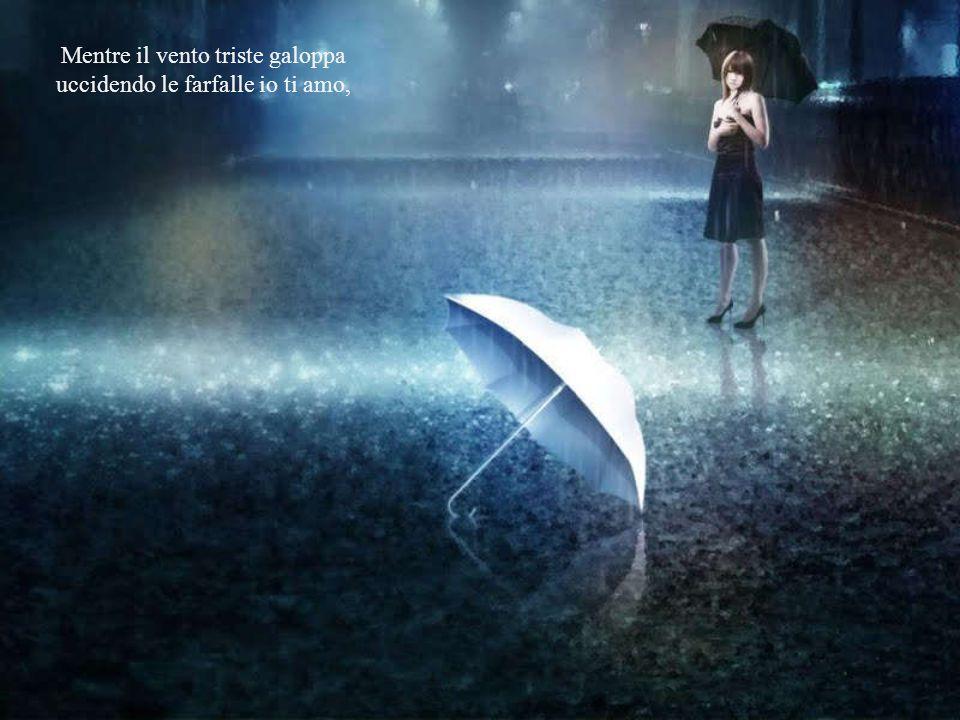 Mentre il vento triste galoppa uccidendo le farfalle io ti amo,