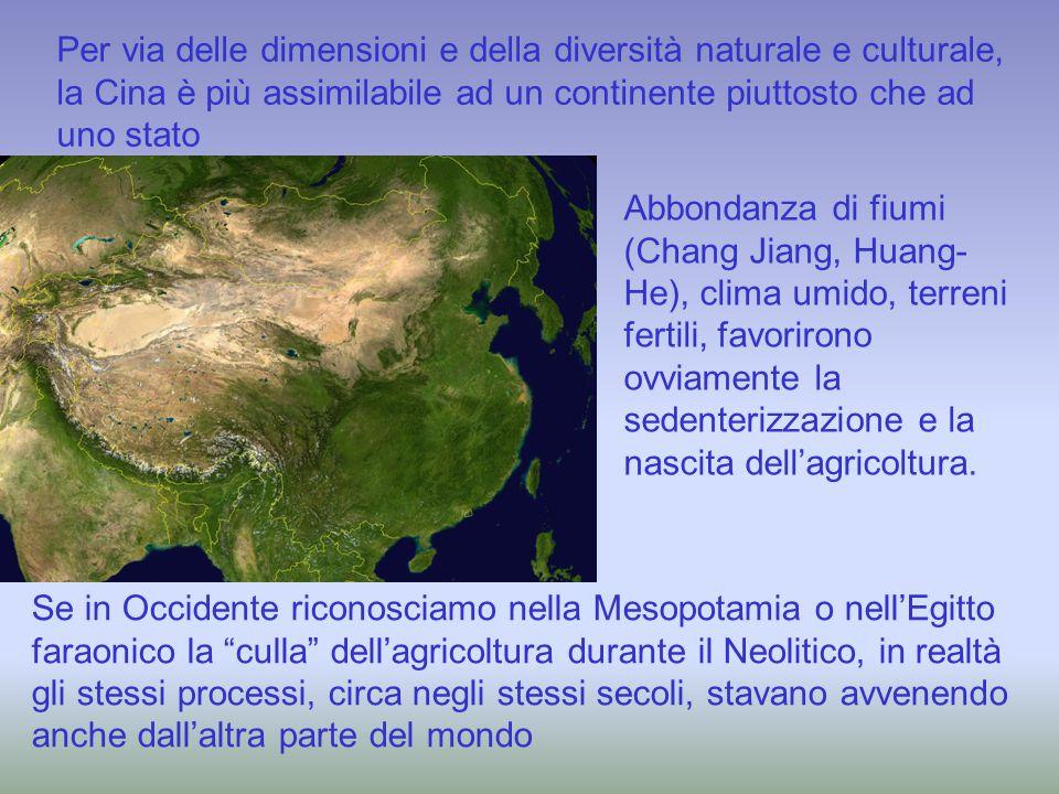 Per via delle dimensioni e della diversità naturale e culturale, la Cina è più assimilabile ad un continente piuttosto che ad uno stato