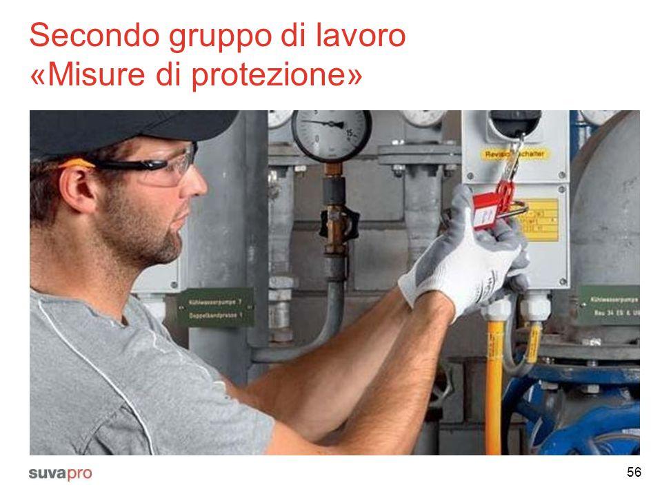 Secondo gruppo di lavoro «Misure di protezione»