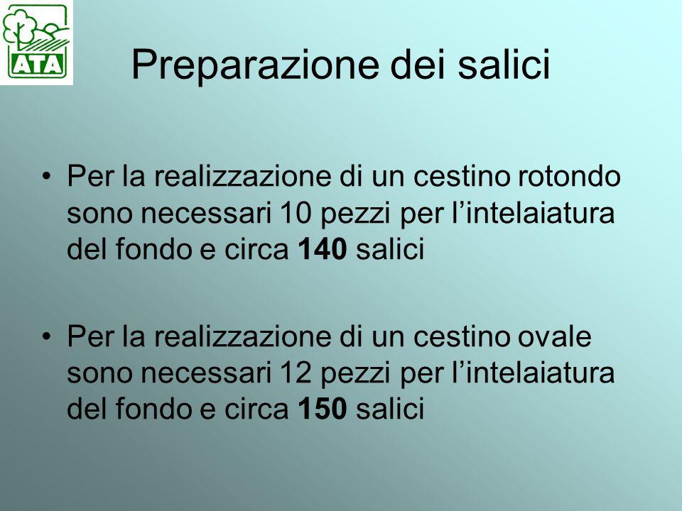 Preparazione dei salici