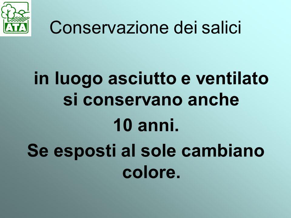 Conservazione dei salici