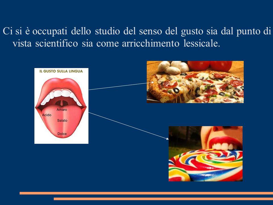 Ci si è occupati dello studio del senso del gusto sia dal punto di vista scientifico sia come arricchimento lessicale.