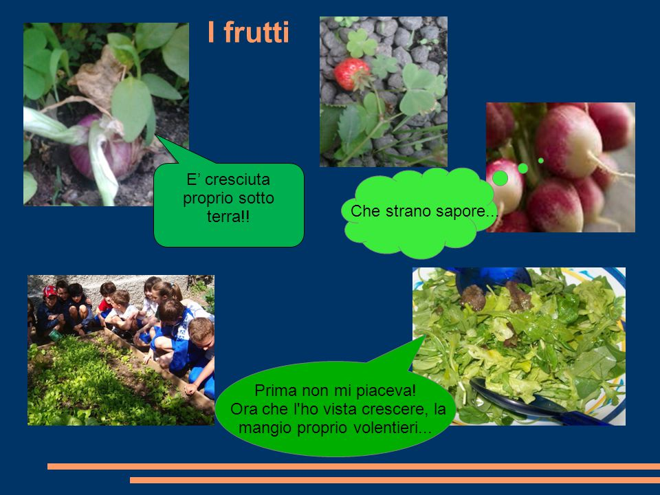 I frutti E' cresciuta proprio sotto terra!! Che strano sapore...
