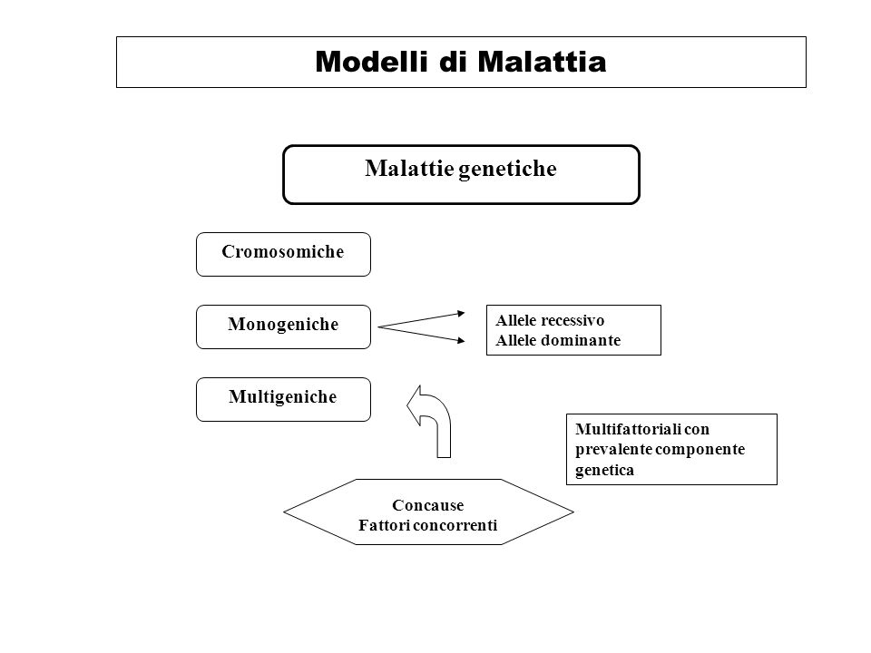 Modelli di Malattia Malattie genetiche Cromosomiche Monogeniche