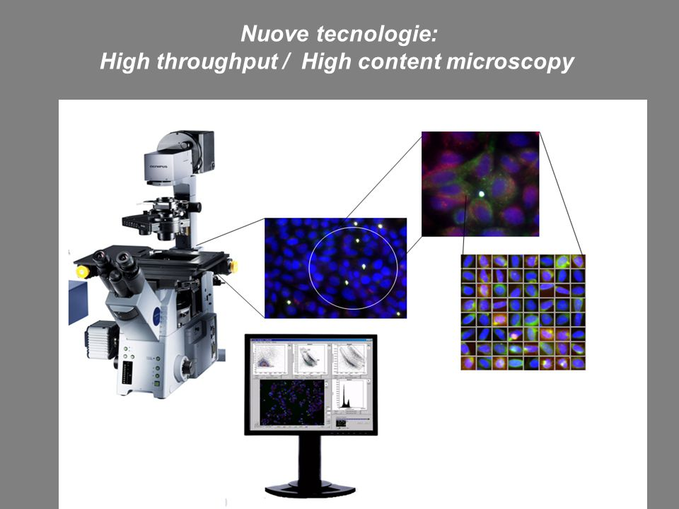 High throughput / High content microscopy
