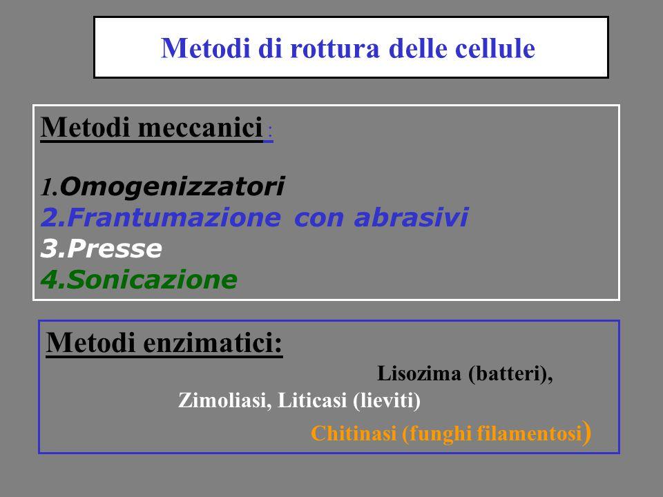 Metodi di rottura delle cellule