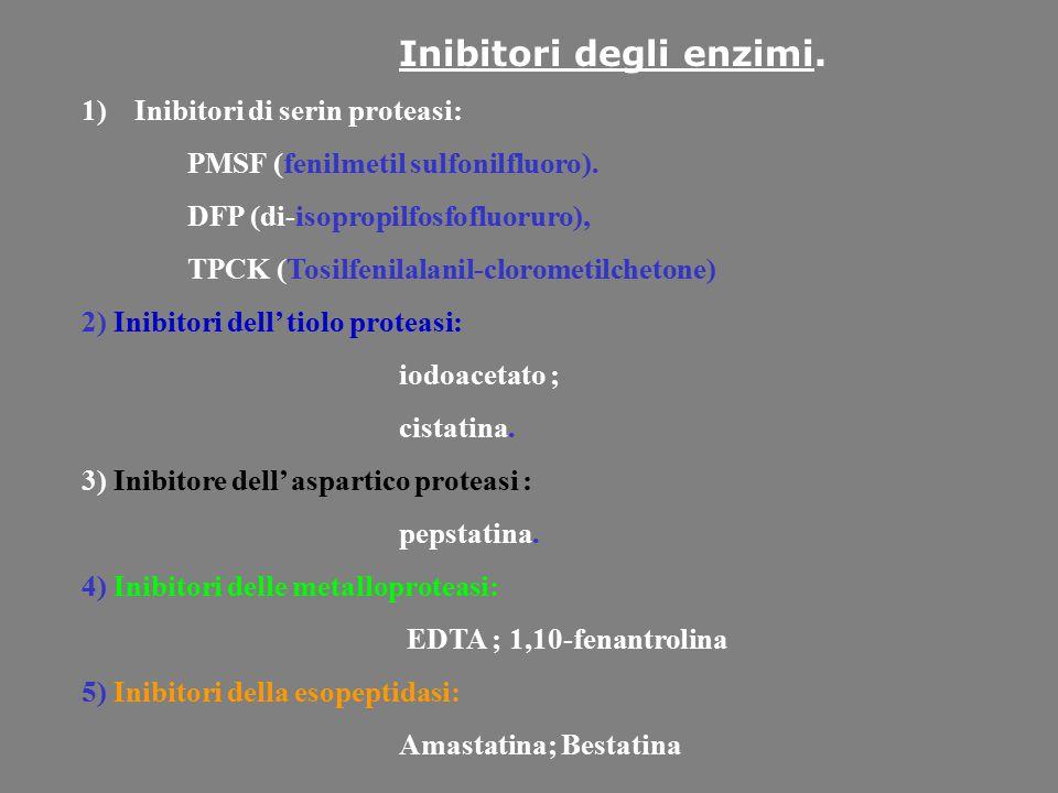 Inibitori degli enzimi.
