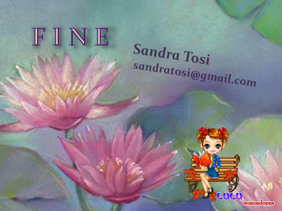 F I N E Sandra Tosi sandratosi@gmail.com