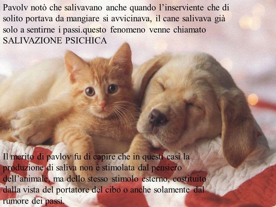 Pavolv notò che salivavano anche quando l'inserviente che di solito portava da mangiare si avvicinava, il cane salivava già solo a sentirne i passi.questo fenomeno venne chiamato SALIVAZIONE PSICHICA