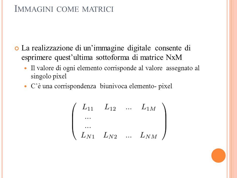 Immagini come matrici La realizzazione di un'immagine digitale consente di esprimere quest'ultima sottoforma di matrice NxM.