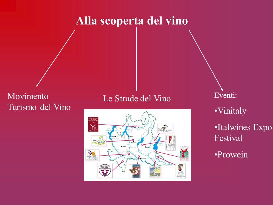 Alla scoperta del vino Movimento Turismo del Vino Le Strade del Vino