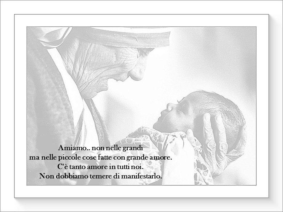 Amiamo. non nelle grandi ma nelle piccole cose fatte con grande amore